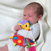 Picture of Blankie Pals™ Teether